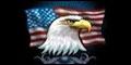 San Fernando Valley Veterans Employment Committee